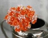 Orange Forget Me Not Flowers