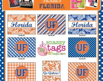 Personalized Bag Tag Luggage Tag Laminated Bag Tag Laminated Luggage Tag Monogrammed Bag Tag Florida Bag Tag Custom Bag Tag GATORS BAG TAG