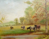 English Cattle Antique