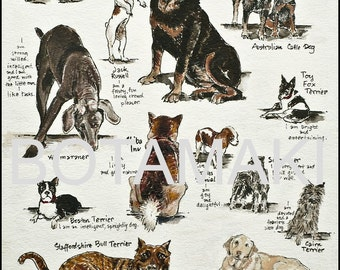 """Dogs chart """"Give Me Shelter"""" 5x7 archival print blank dog lover's card or matted print"""