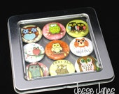 OWL Magnets - Set of 9 Button Magnets with Window Top Tin - ready for gift giving - refrigerator magnets