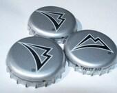 CUSTOM for Matthew - Bottle Cap Magnets