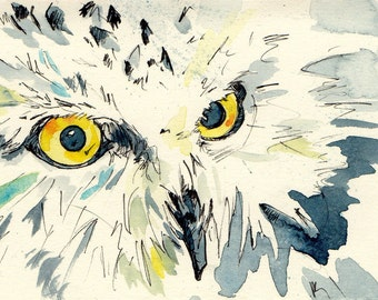 Owl Stare - Watercolor and Ink Painting Reproduction of an Owl's Face - Print of Original Art by Jen Tracy