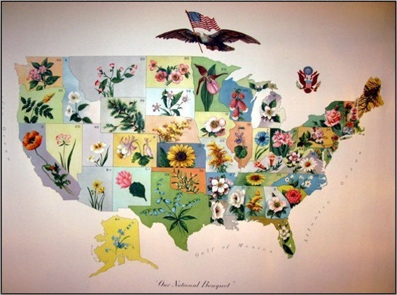 98 year old vintage us state flower map