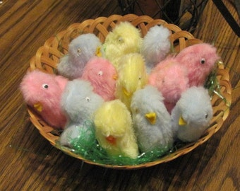 Easter Baby Chicks for Sale