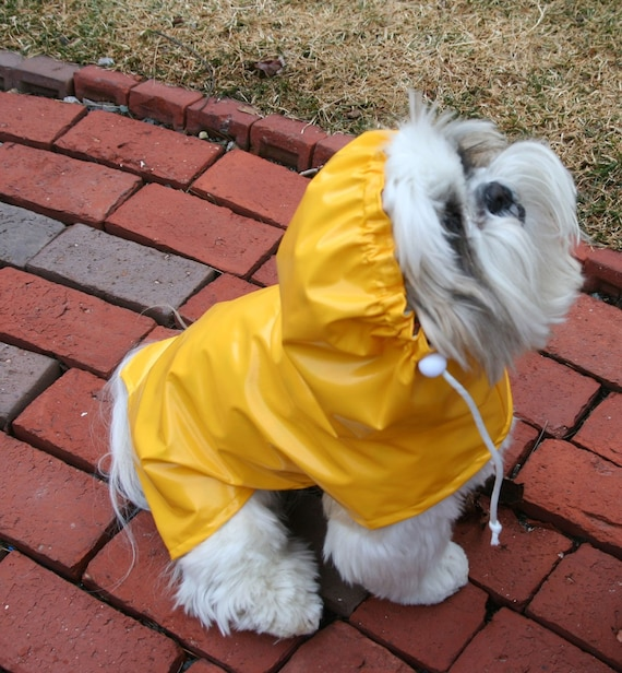 Wet Look Dog Raincoat with Hood -- to be custom made for your small pup