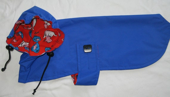 The Best Raincoat for Small Dogs - to be custom  made for your pup