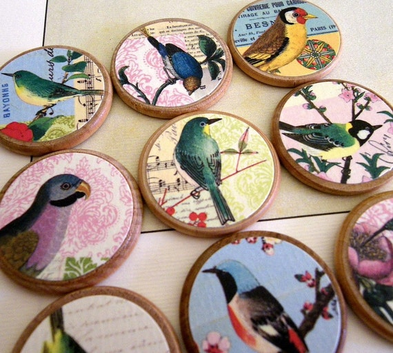 Magnets or Thumbtacks - Birds of a Feather - set of 9