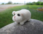 Mini Guinea Pig Needle Felted  Holding for plumo62