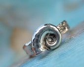 Shell Jewelry, Seashell Ring, Silver Shell Ring, Fine Silver Shell Ring, Seashell Ring, Seashell Jewelry, Sizes 4 5 6 7 8 9 10 11 12 13 14