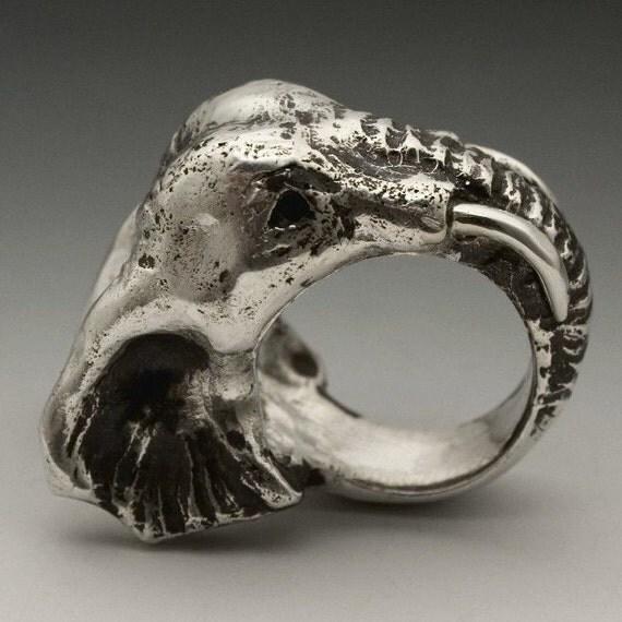 Elephant ring - photo#11
