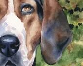 TREEING WALKER COONHOUND Art Print Watercolor Signed by Artist D J Rogers