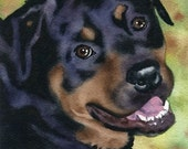 ROTTWEILER Dog Watercolor Art Print Signed by Artist DJ Rogers
