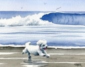 "Bichon Frise Art Print ""BICHON FRISE At The Beach"" Signed by Artist D J Rogers"