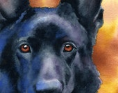 BLACK GERMAN SHEPHERD Art Print Signed by Artist D J Rogers