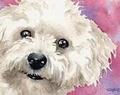 BICHON FRISE Art Print Signed by Artist DJ Rogers