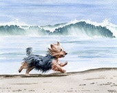 YORKSHIRE TERRIER Art Print Dog Watercolor Signed by Artist DJ Rogers