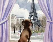 DACHSHUND IN PARIS Dog Signed Art Print by Artist D J Rogers