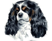 CAVALIER KING CHARLES Spaniel Dog Art Print Signed by Artist D J Rogers