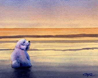 "Bichon Frise Art Print ""BICHON FRISE SUNSET"" Signed Watercolor by Artist D J Rogers"