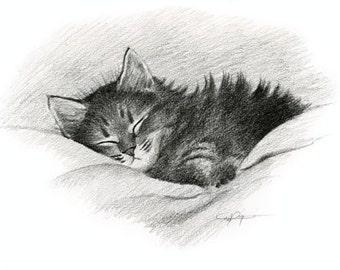 TABBY CAT Signed Pencil Fine Art Print by Artist DJ Rogers
