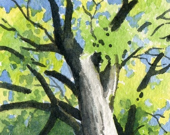 TREE STORY Watercolor Signed Fine Art Print by Artist DJ Rogers