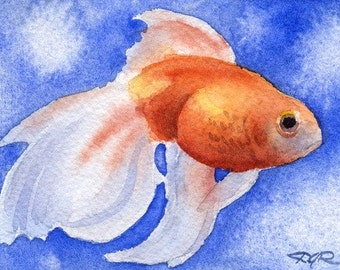 FANCY GOLDFISH Watercolor Signed Fine Art Print by Artist DJ Rogers