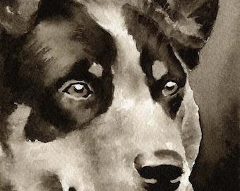 AUSTRALIAN CATTLE DOG Sepia Art Print Signed by Artist D J Rogers