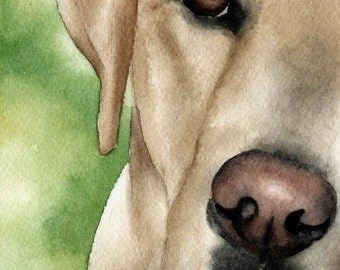 LABRADOR RETRIEVER Art Print Signed by Artist DJ Rogers