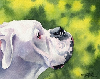 WHITE BOXER Art Print Signed by Artist DJ Rogers