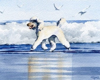 """White Poodle Art Print """"WHITE POODLE At The BEACH"""" Signed by Artist D J Rogers"""