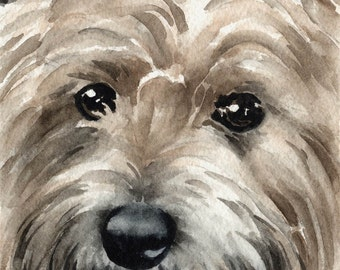 CAIRN TERRIER Art Print Signed by Artist DJ Rogers