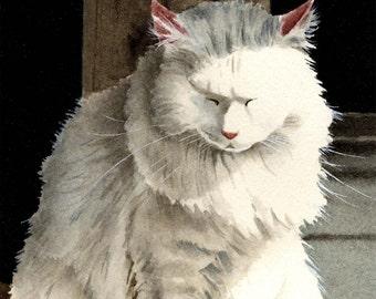 "White Cat Art Print ""CAT NAP"" Signed by Artist DJ Rogers"