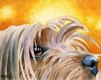 YORKSHIRE TERRIER Art Print Watercolor Signed D J Rogers
