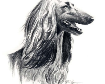 AFGHAN HOUND Drawing Art Print Signed by Artist DJ Rogers
