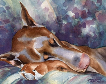 "Red Doberman Art Print ""RED DOBERMAN SLEEPING"" Signed by Artist D J Rogers"