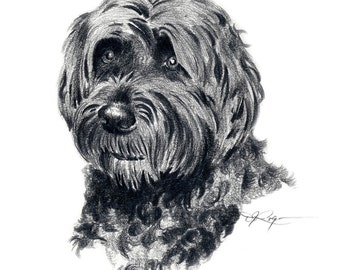 PORTUGESE WATER DOG Dog Pencil Drawing Art Print Signed by Artist D J Rogers
