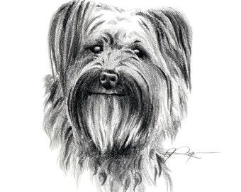 PYRENEAN SHEPHERD Dog Pencil Drawing Art Print Signed by Artist DJ Rogers