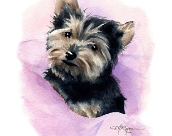 YORKSHIRE TERRIER PUPPY Dog Watercolor Painting Art Print Signed by Artist D J Rogers