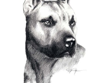 PIT BULL Terrier Dog Art Print Signed by Artist DJ Rogers