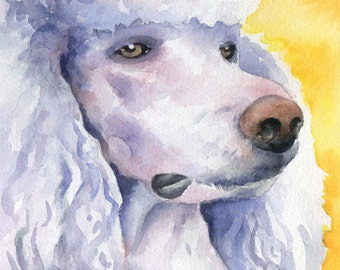 WHITE POODLE Art Print  Watercolor Signed by Artist DJ Rogers