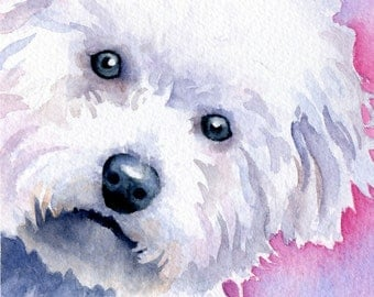 BICHON FRISE Dog Watercolor Art Print Signed by Artist DJ Rogers
