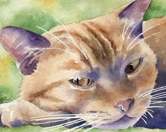 ORANGE TABBY CAT Art Print Signed by Artist D J Rogers