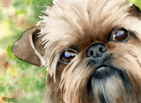 BRUSSELS GRIFFON Dog Signed Watercolor Art Print by Artist DJ Rogers