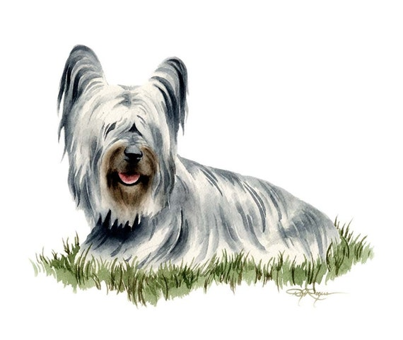 SKYE TERRIER Dog Watercolor Painting Art Print Signed by Artist DJ Rogers