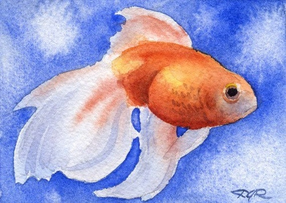 Fancy goldfish watercolor signed fine art print by artist dj for Fish out of water watercolor
