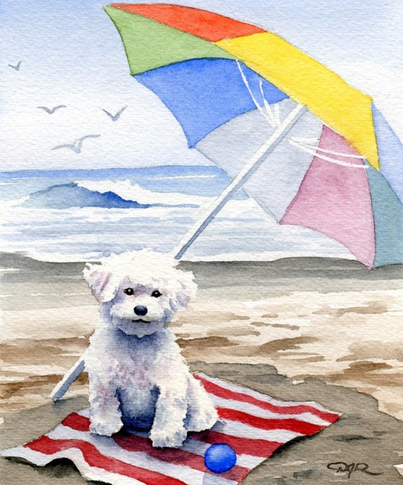 "BICHON FRISE Art Print ""Bichon Frise At The Beach"" Signed by Artist DJ Rogers"