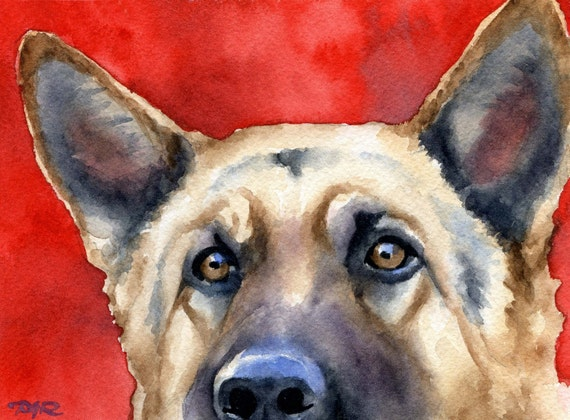 GERMAN Shepherd Art Print Signed Watercolor by Artist D J Rogers
