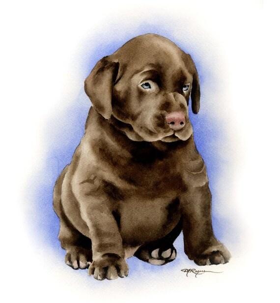CHOCOLATE LAB Puppy Labrador Dog Art Print Signed by Artist DJ Rogers