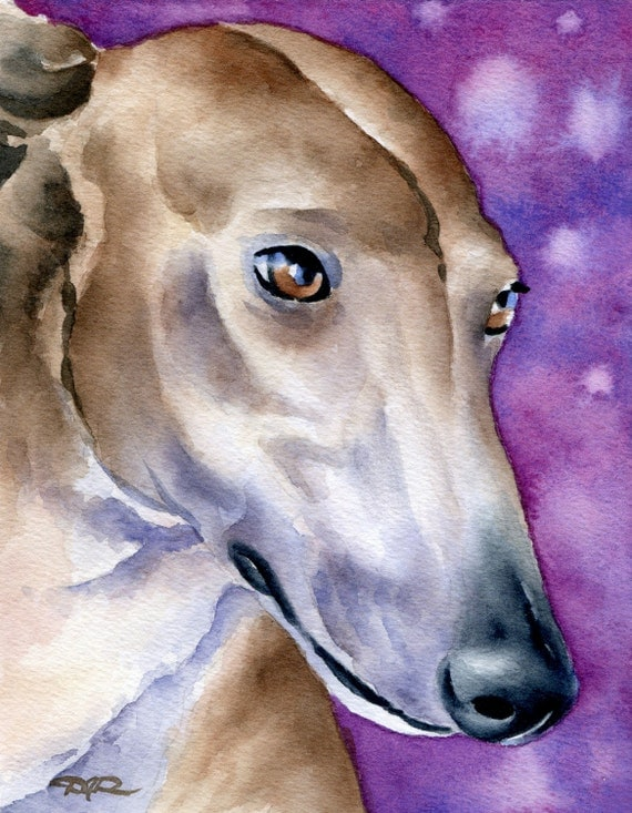 GREYHOUND Art Print Watercolor Signed by Artist DJ Rogers